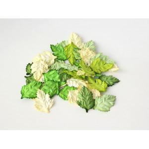Листья шиповника без стебельков цвет Зеленый микс размер 3,5 см 10- шт.