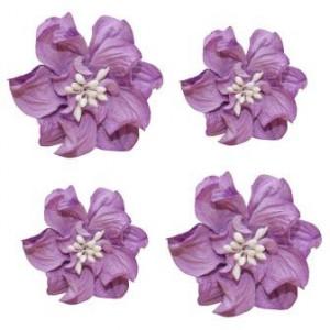 Цветы кудрявой фиалки цвета Фиолетовые от ScrapBerry's