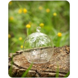 Декоративный стеклянный колпак с зеркальным дном от Blossom Line