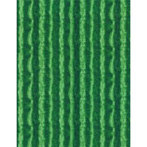 Ткань Fresh Fruit Watermelon Rind Stripe Green Timeless Treasures