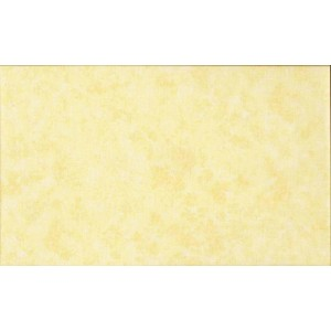 Ткань 2800-Y03 из коллекции Spraytime от Makower